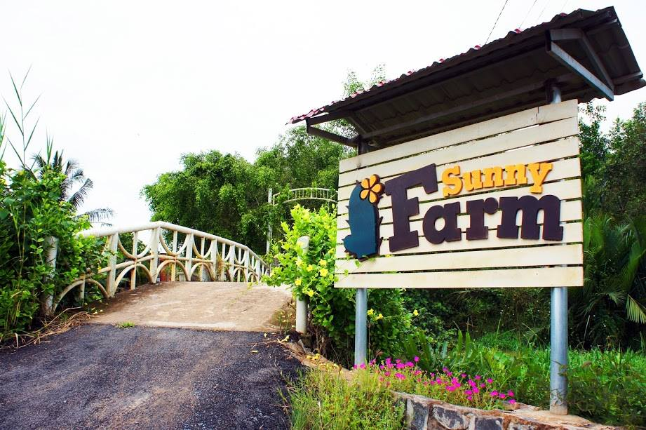 Chuyến trải nghiệm cuộc sống nông thôn tại nông trại Sunny Farm